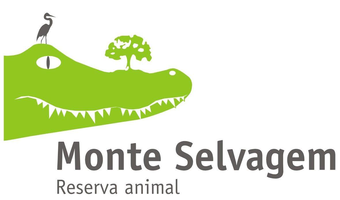 MONTE SELVAGEM MONTEMOR-O-NOVO | 04 JULHO